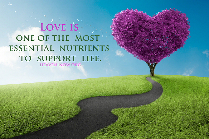 Love is one of the most essential nutrients to support life